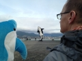 Dolphy_Meets_Coupland_Orca