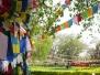Lumbini: Birthplace of the Buddha