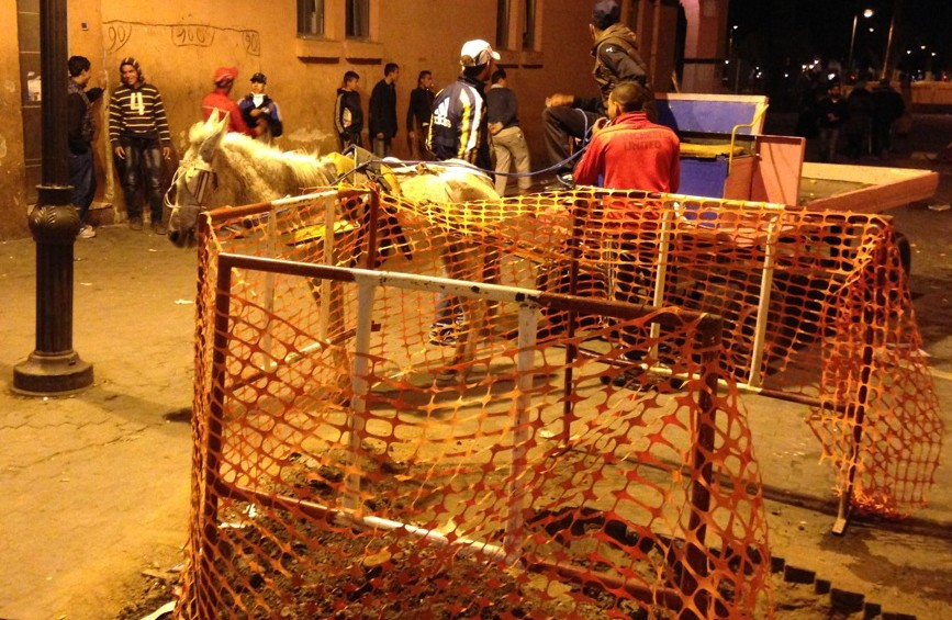 Donkeys never sleep: this one works midnight construction near Jemaa El Fna in Marrakesh.