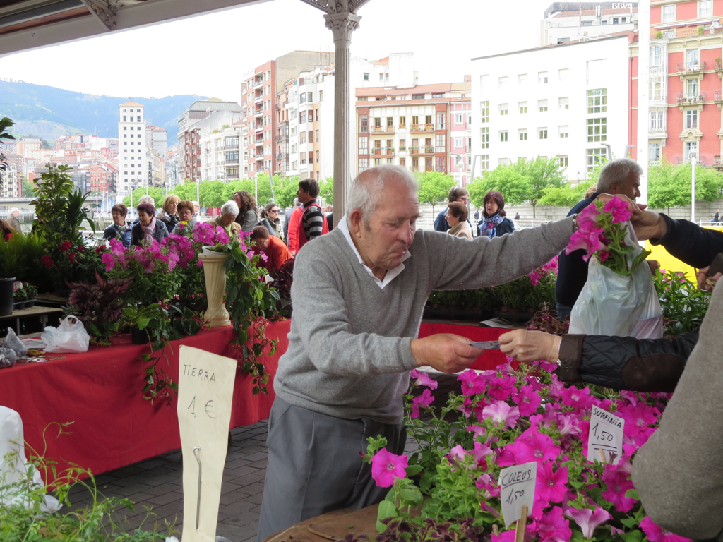 Sunday flower market, Plaza