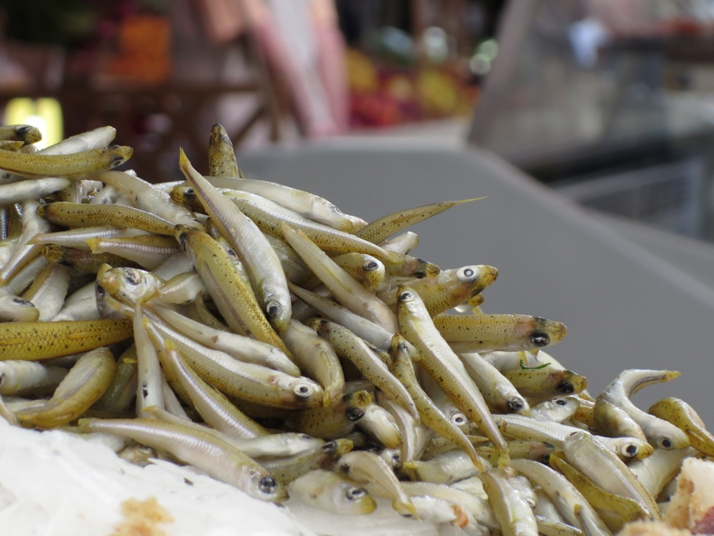 The fish is fresh in Palermo's open air markets