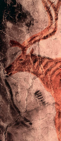 Reindeer in Tito Bustillo cave paintings.