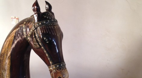 The Twist-Ear Horses of Rajasthan
