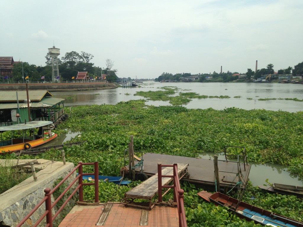 The Confluence Chao Phraya and the Pa Sak