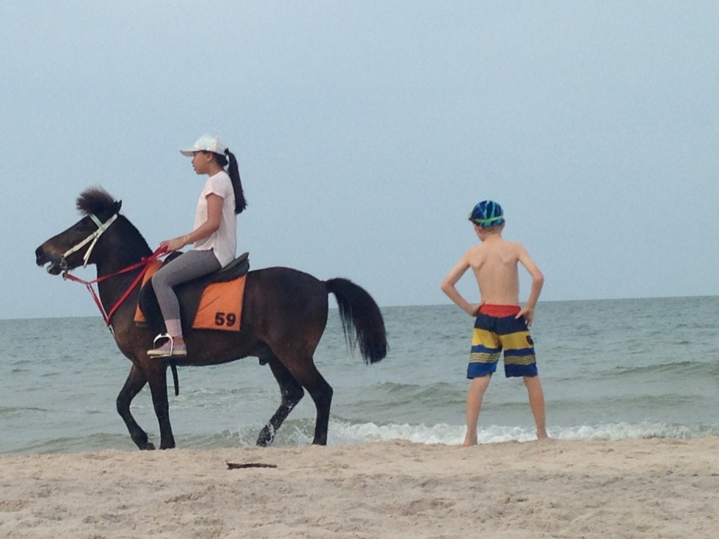 A Horse At Hua Hin With A Too-Short Tie-Down